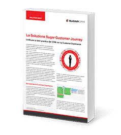 Customer Journey Plug-in - ebook
