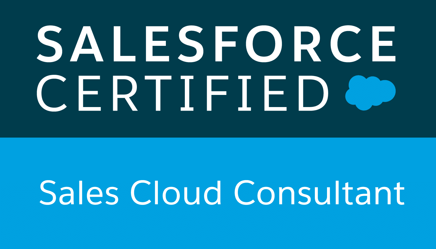Salesforce - Sales Cloud Consultant